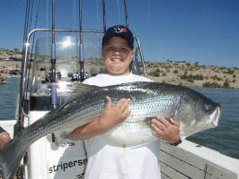 42.6 lbs Striper by Keith Thompson